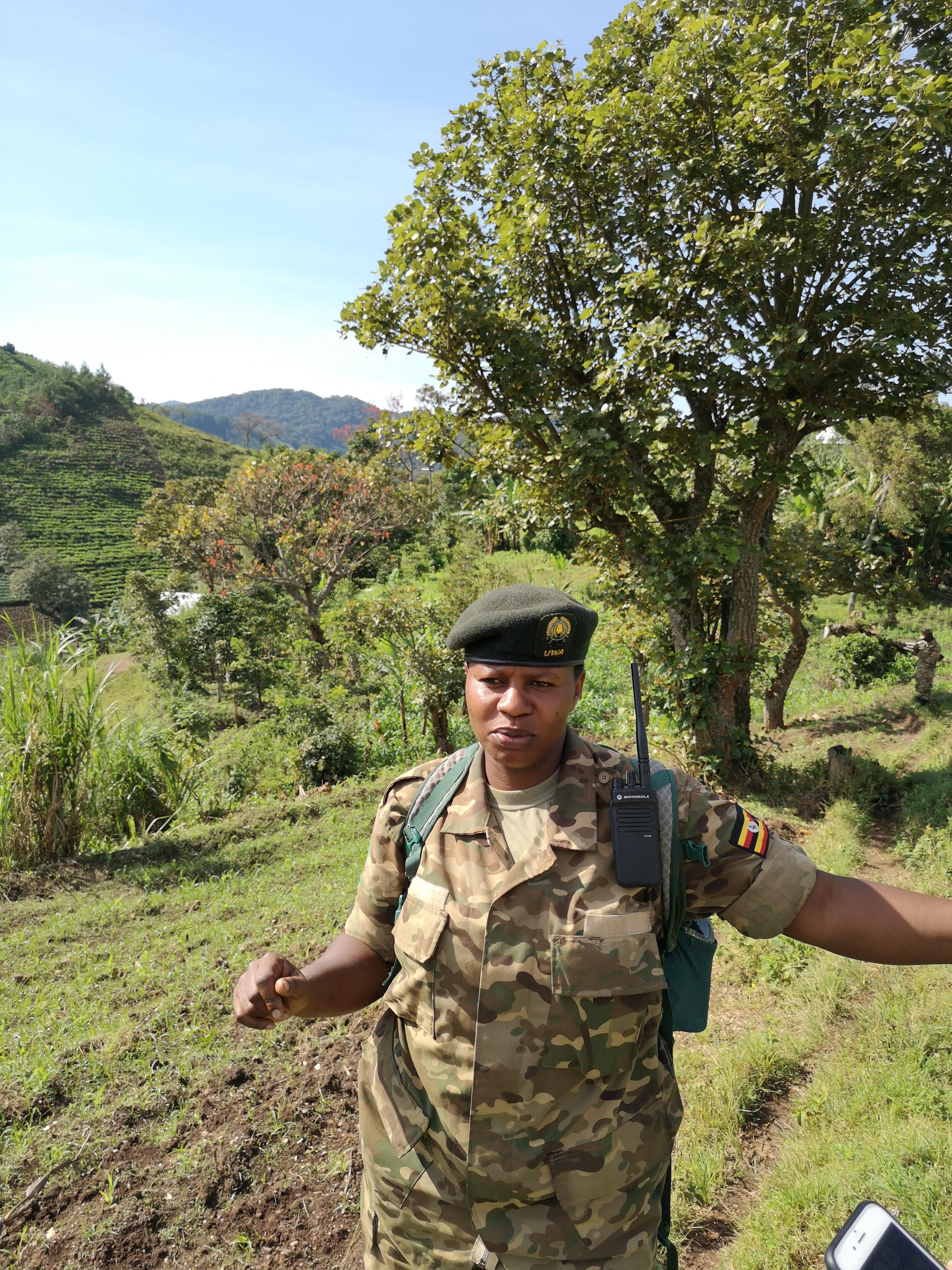 bwindi_queen_elizabeth_national_park
