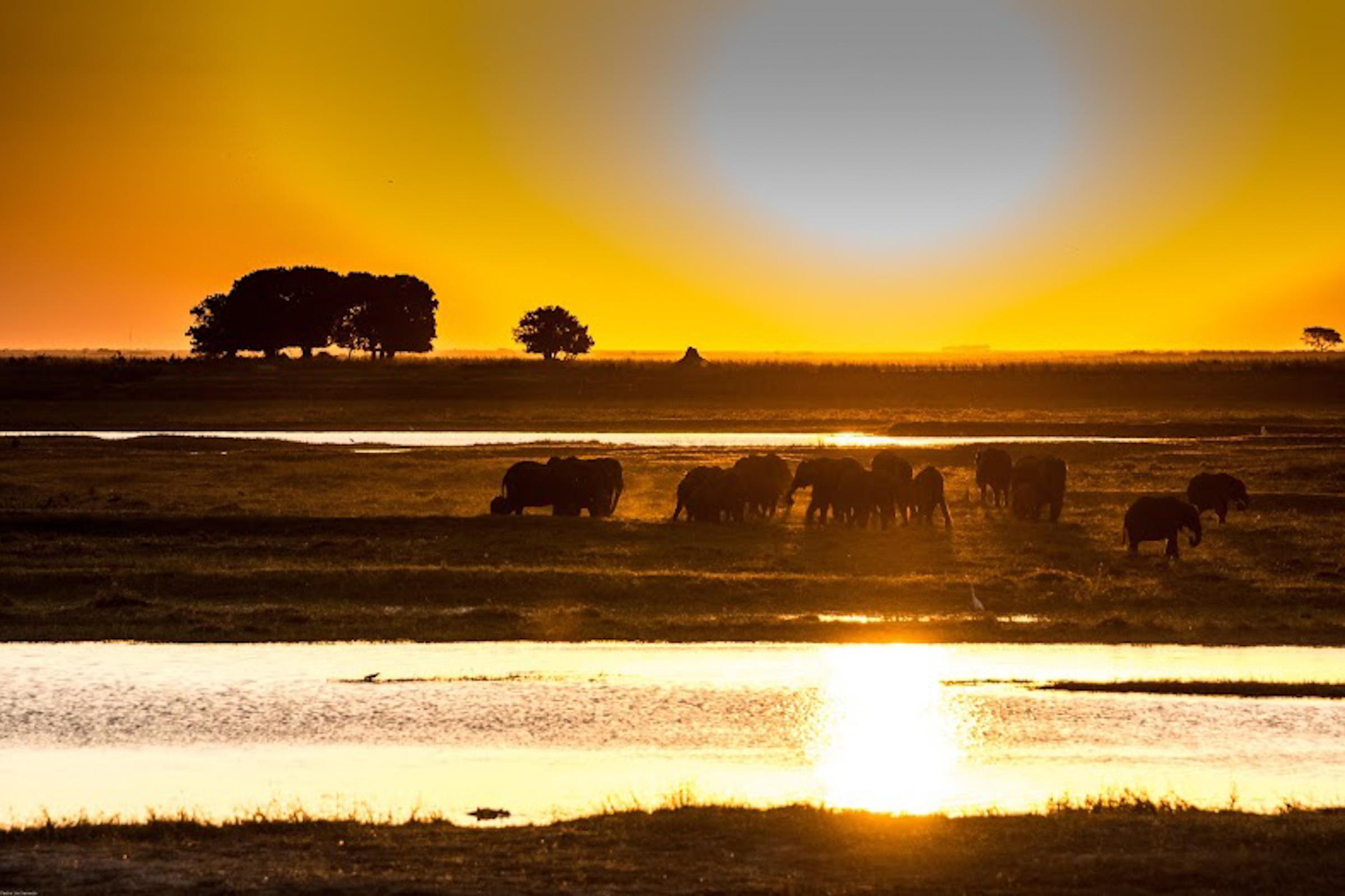 das_beste_von_namibias_norden_caprivi_okavango_delta