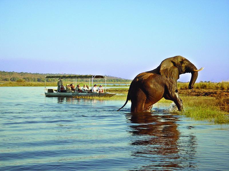 drei_lander_safari