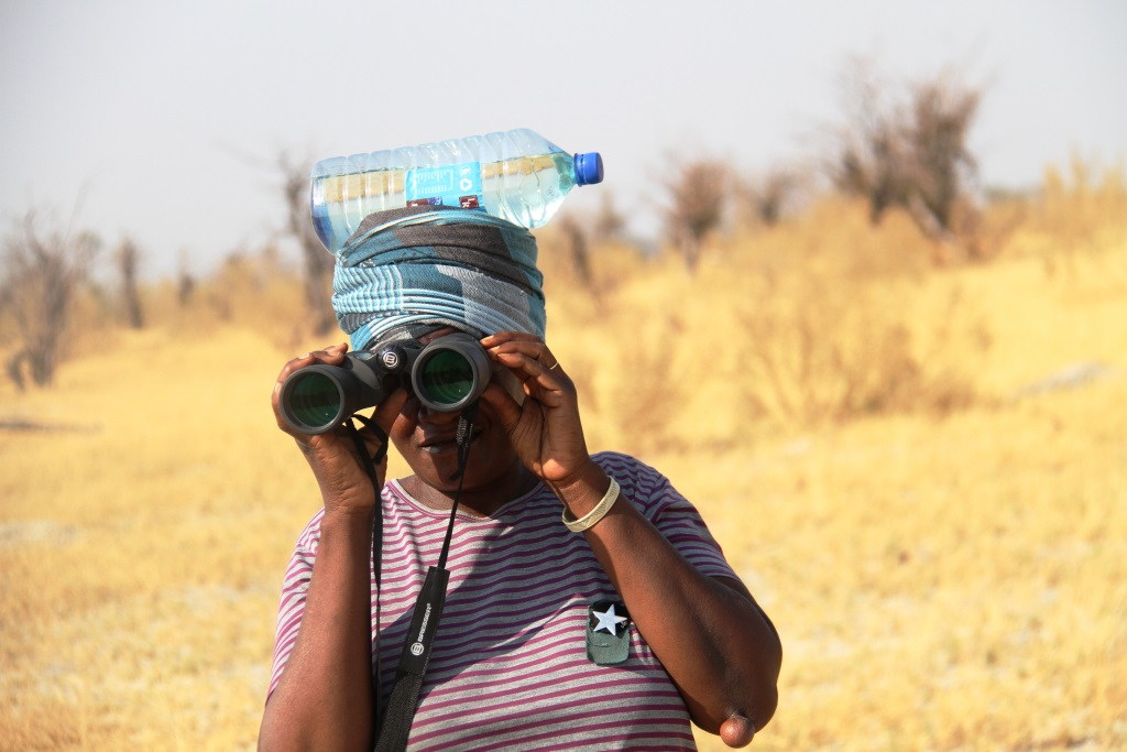 glimpse_of_okavango