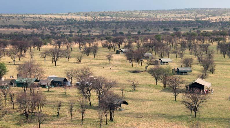 kultur_busch_safari