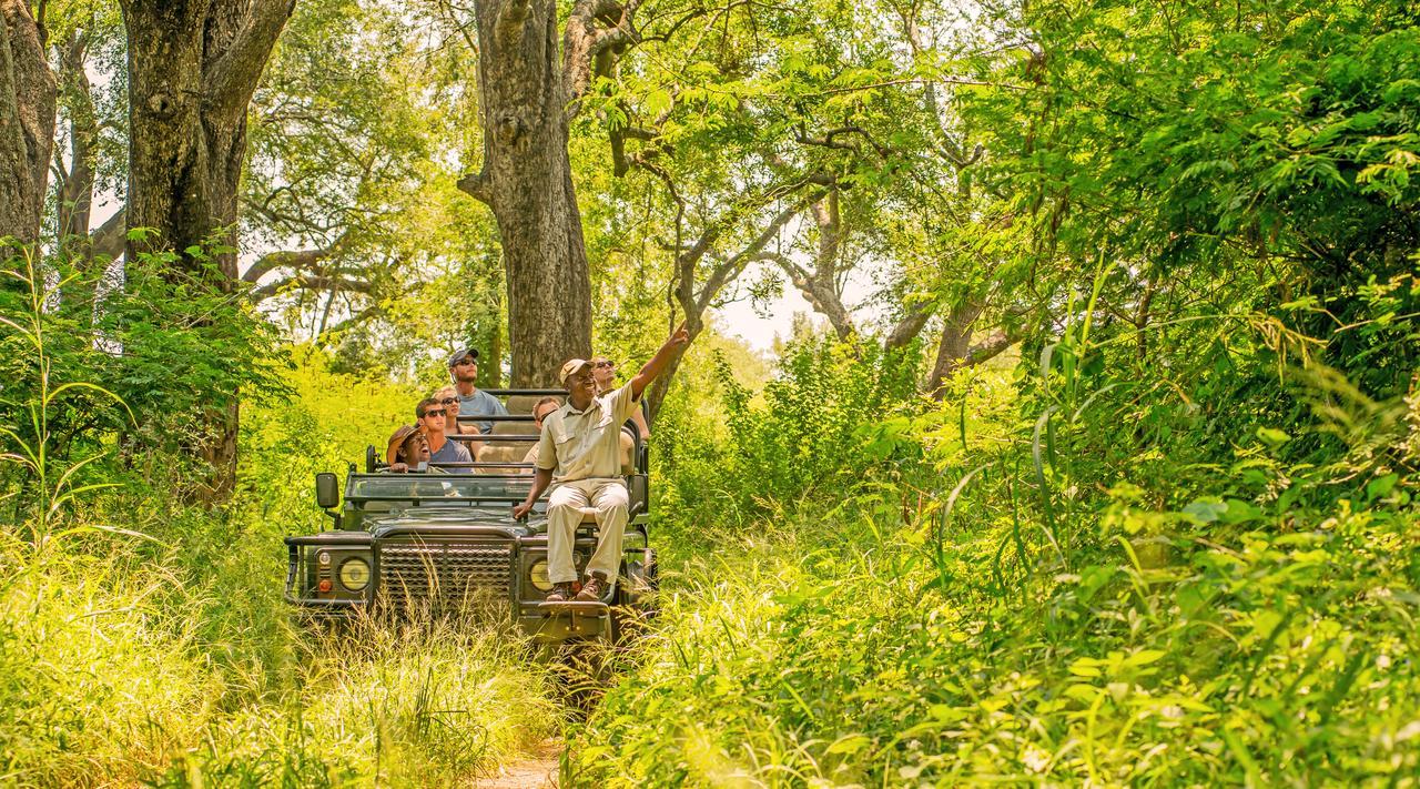safari_intensiv_reise_durch_den_wildreichen_norden