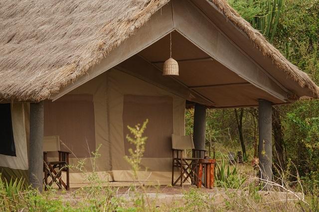 wildebeest_safari_gunstige_safari_in_den_norden_tanzanias